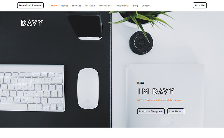 Davy-Del Website Template