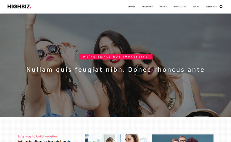 Highbiz – Responsive Multipurpose Website Template HTML5