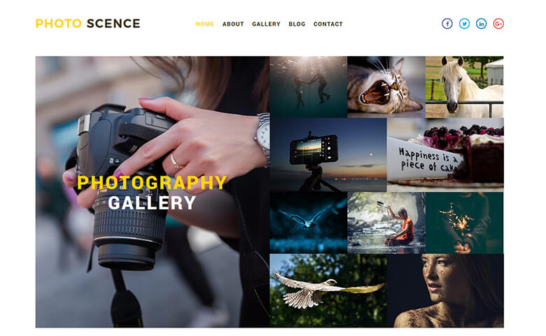 Photo Scence- Responsive Photography Website Template