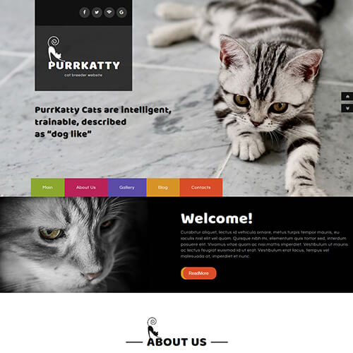 Purrkatty – Free Responsive Pet Website Templates