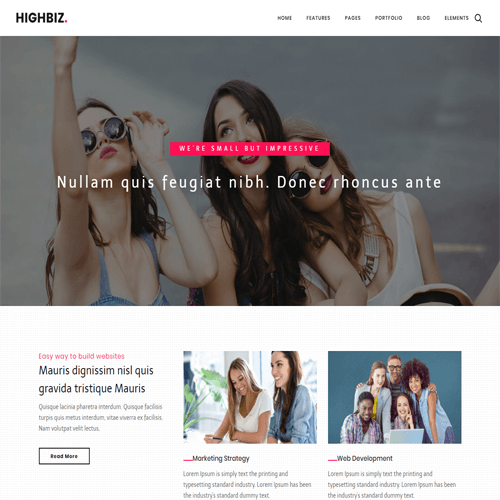 Highbiz – Responsive Multipurpose Website Template HTML5