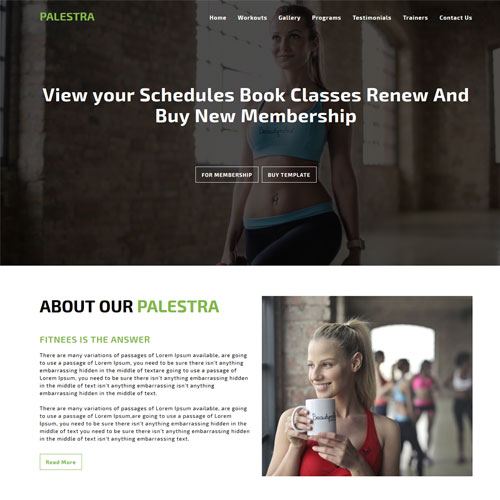 Palestra – Best Gym Websites Design HTML5 Template