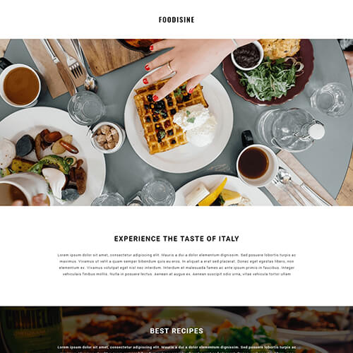 Foodisine - Responsive Newsletter Design Templates